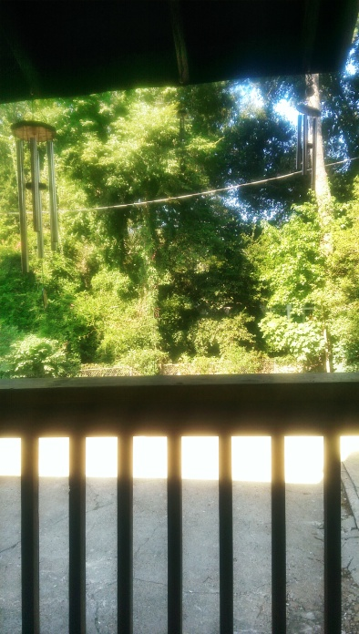 I enjoyed sitting on the back porch of Sevendipity after enjoying my breakfast.